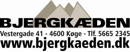 bjergkc3a6den_adr_og_www2