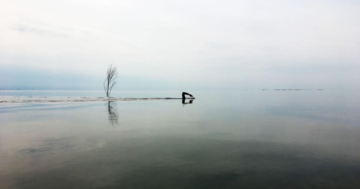 Første uge - Swim Denmark